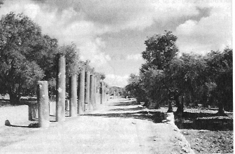 Columned Road in Samaria - Concise Bible Atlas